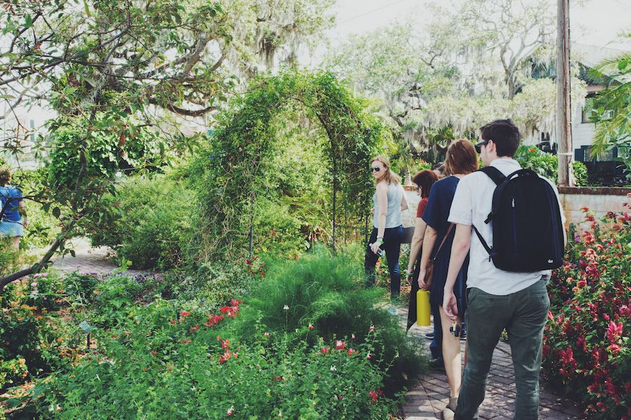 A stroll through the butterfly garden at Selby