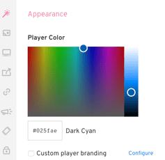 video-optimization-custom-branding